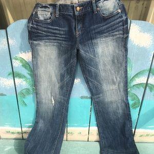 Women's Express Stella boot cut jeans